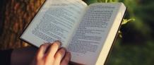 Littérature et langue française